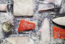 Экспорт рыбных продуктов в Европу: многолетняя история запорожского производителя рыбы и морепродуктов