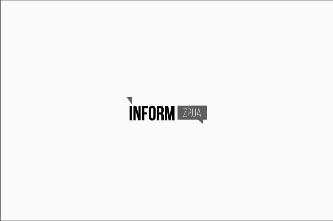 В Запорожье на Набережной легковой автомобиль вылетел на газон