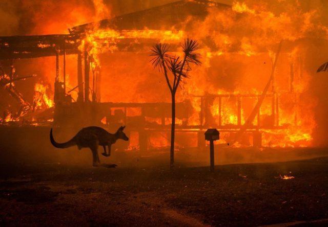 Pozhary v Avstralii, 06.01.2020