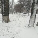 v-zaporozhe-nachalsya-silnyj-snegopad-foto