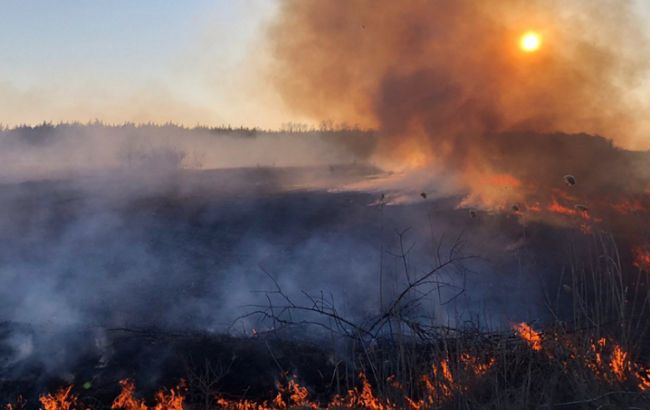 Высокая пожарная опасность в Запорожье – предупреждение от службы спасения