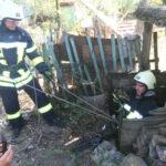 V Zaporozhskoy oblasti spasateli dostali kota, kotoryy upal v glubokiy kolodets