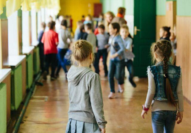 В Запорожской области на каникулы закрыта половина школ