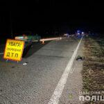 В Запорожской области автомобиль сбил насмерть велосипедиста