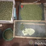 В Пологах задержали наркоторговца, - у него изъяли 2,5 кг каннабиса