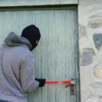 В Запорожской области задержаны двое грабителей