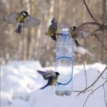Запорожцев приглашают на Хортицу на кормление птиц
