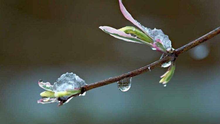 Погода в Запорожье на неделю: прогноз на 3 мая – 9 мая