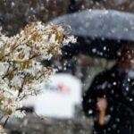 Запоріжжя прогноз погоди Наталія Діденко
