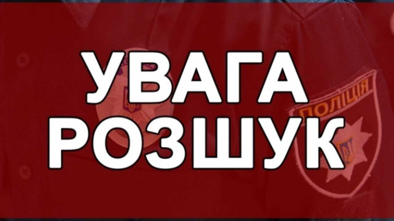 Запорожские волонтеры просят помощи в поисках 82-летнего мужчины