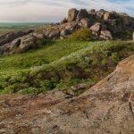 Природа заповедник отдых на природе Украина