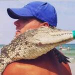 Кирилівка крокодил фотосесія