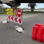 Запоріжжя дорога ремонт Хортиця