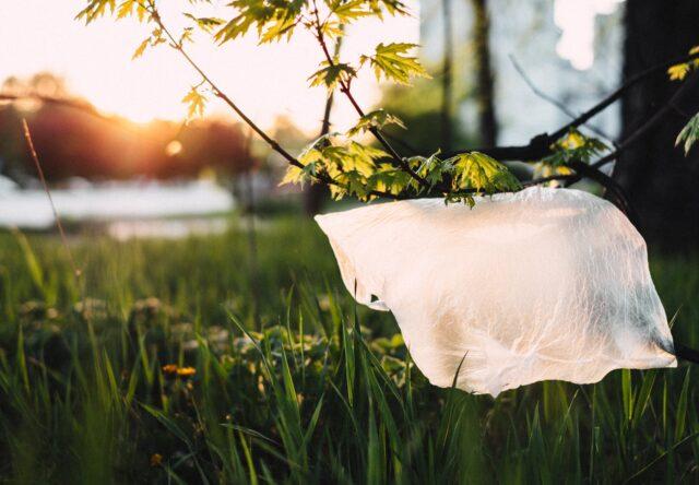 Пластиковые пакеты в Украине под ограничением
