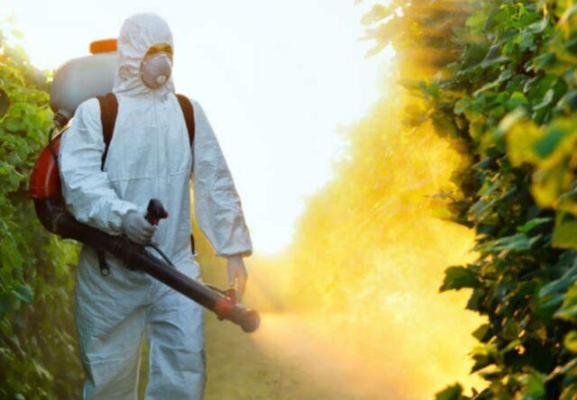Комары в Бердянске - когда будут травить насекомых